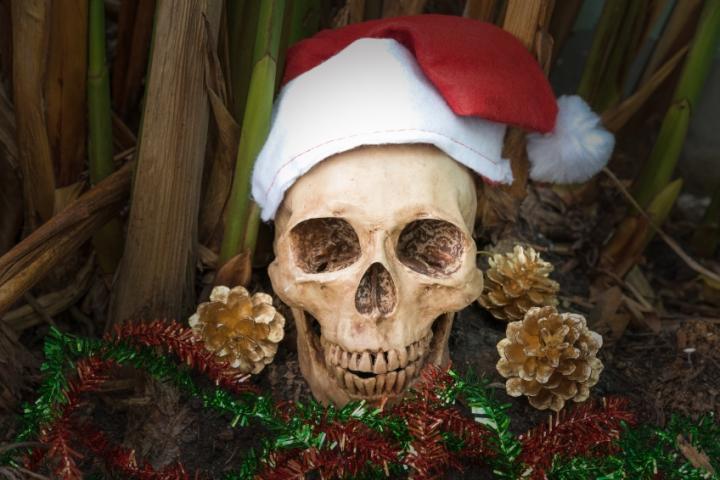 Still life with skull, dark concept